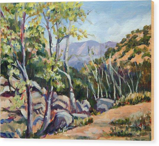 Tucson I Wood Print