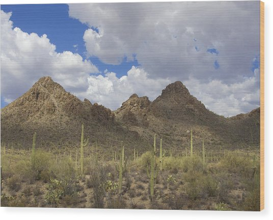 Tucson Mountains Wood Print