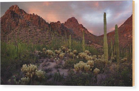 Tucson Mountains Sunset Wood Print