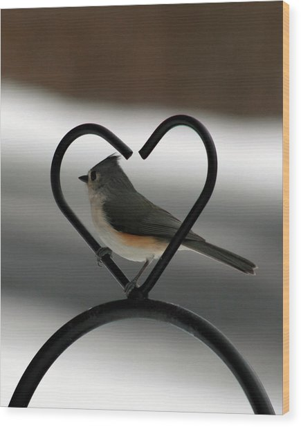 Tufted Titmouse In A Heart Wood Print