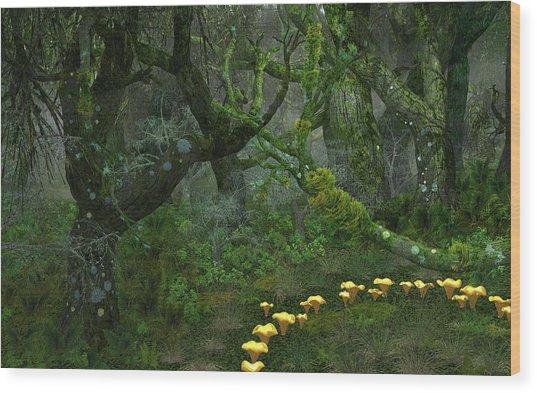 Tulgey Wood Wood Print by Diana Morningstar