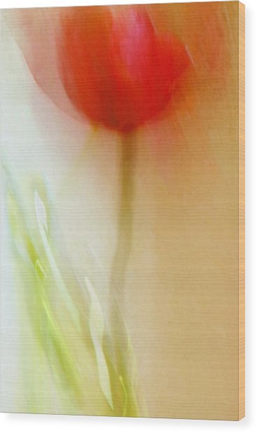Tulip Dancer Wood Print