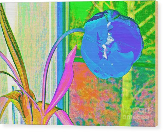 Tulip Dream In The Morning Wood Print