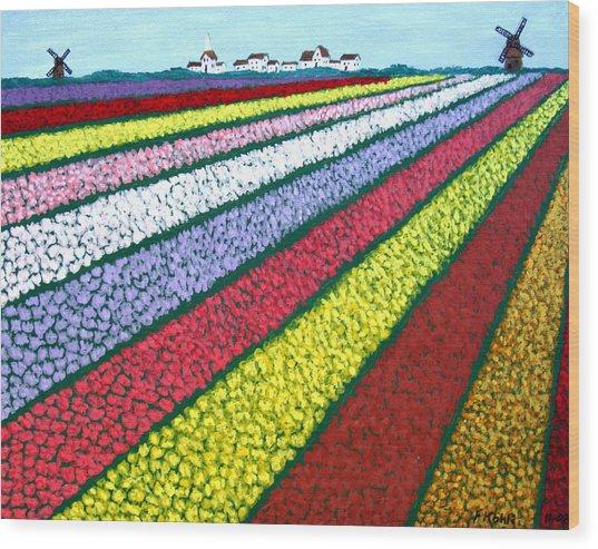 Tulip Fields Wood Print by Frederic Kohli