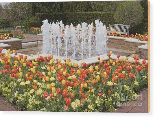 Tulip Garden Wood Print by Elvira Butler