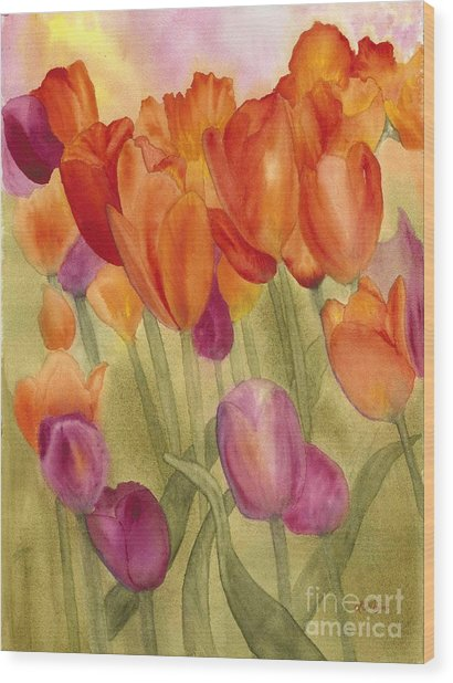 Tulip Glory Wood Print