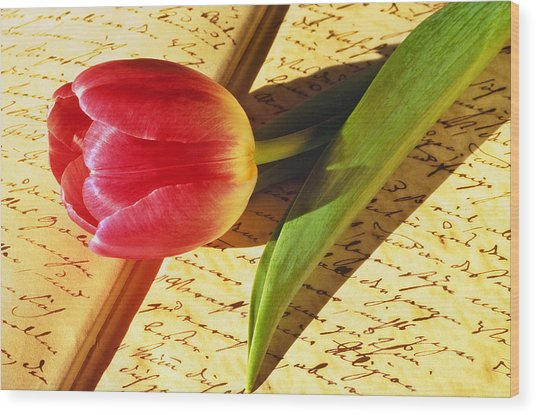 Tulip On An Open Antique Book Wood Print by Tony Ramos