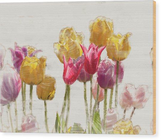Tulipe Wood Print