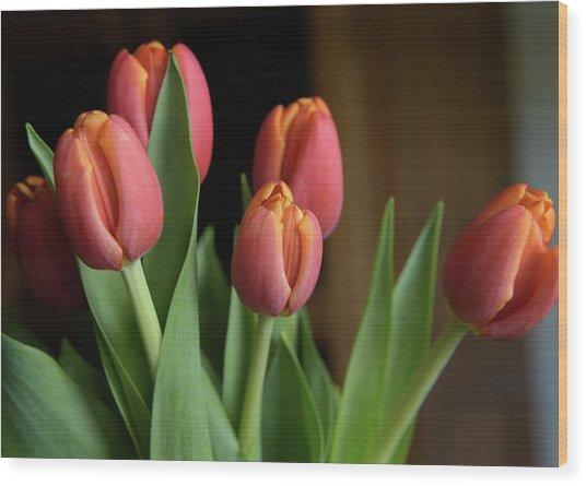 Tulips 2016 Wood Print