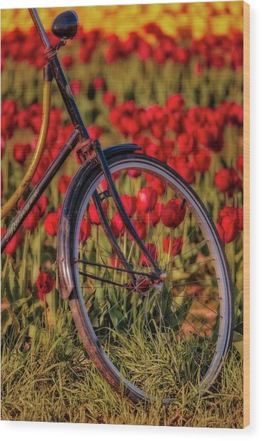 Wood Print featuring the photograph Tulips And Bicycle by Susan Candelario