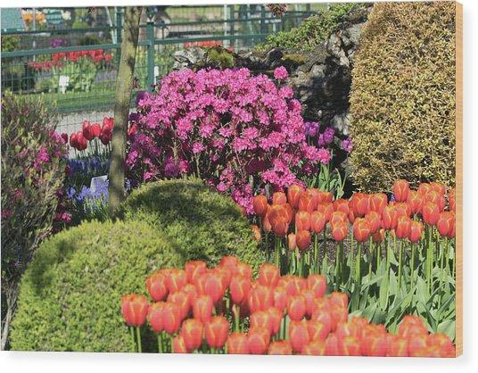 Tulips And Rhodies Wood Print