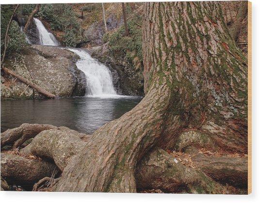 Tumbling Waters Wood Print