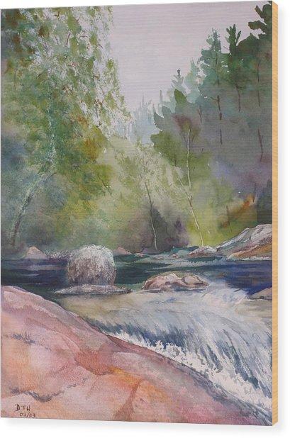 Tumbling Waters  Wood Print by Debbie Homewood