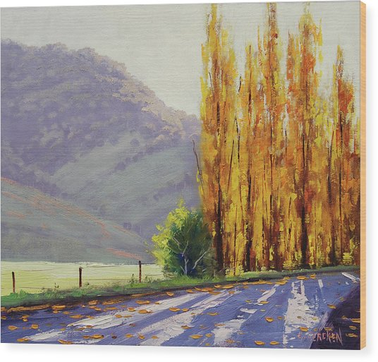 Tumut Poplars Wood Print by Graham Gercken