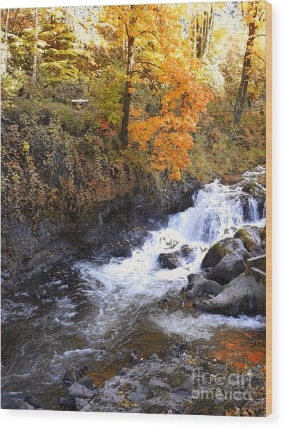 Tumwater Falls In The Autumn Wood Print