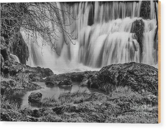 Tumwater Falls Park Wood Print