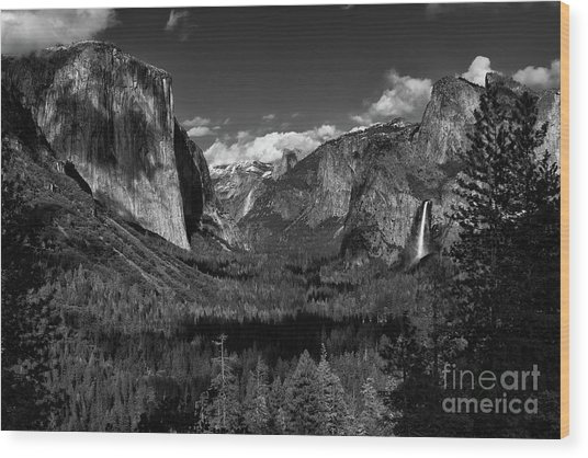 Tunnel View Black And White  Wood Print