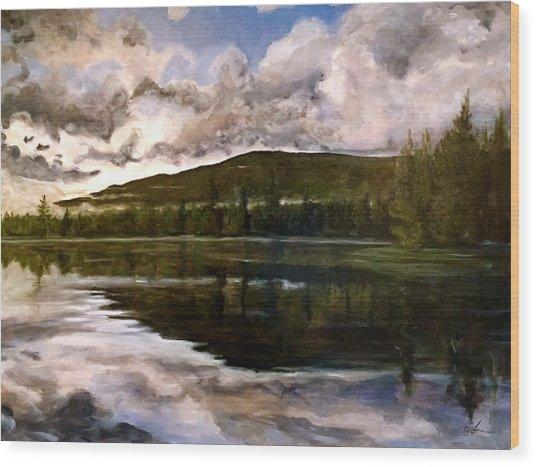 Tupper Lake Evening Mood Wood Print by David Llanos
