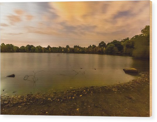 Turners Pond After Dark Wood Print