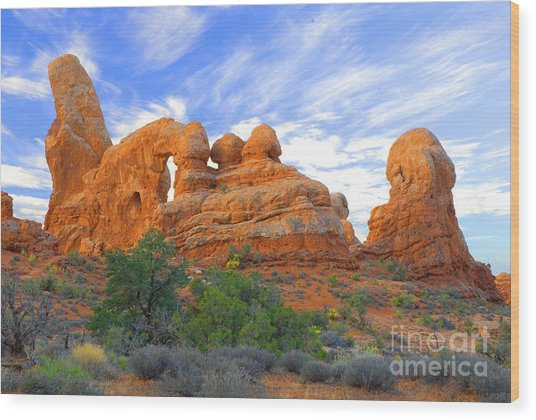 Turret Arch Wood Print by Dennis Hammer
