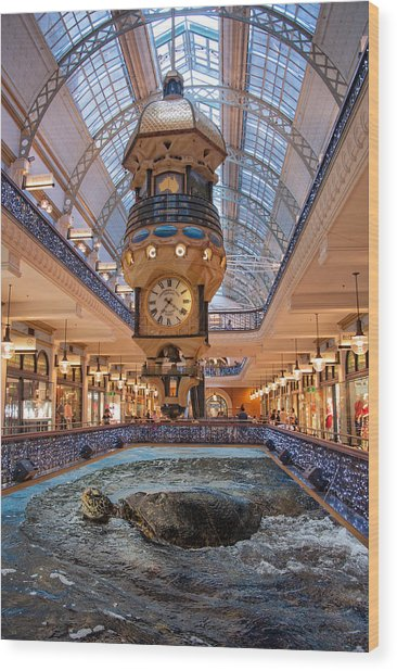 Wood Print featuring the photograph Turtle At The Mall by Harry Spitz