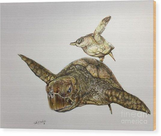 Turtle Iv Wood Print