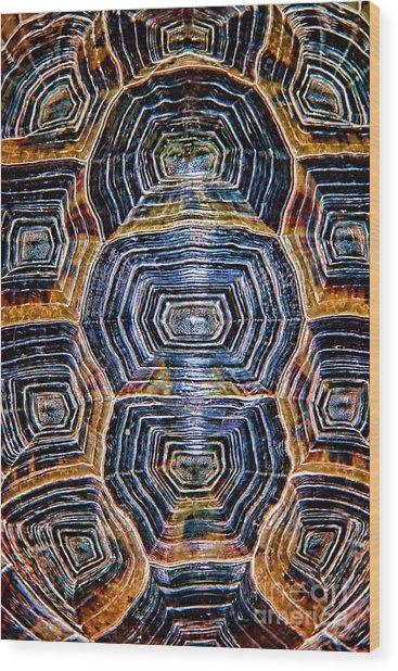 Turtle Madness Wood Print