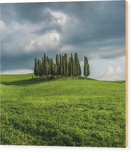 Tuscan Wonderland - Val D Orcia Wood Print