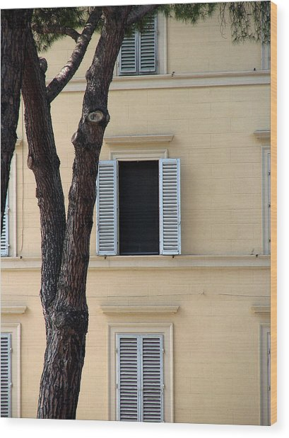 Wood Print featuring the digital art Tuscany Window by Julian Perry