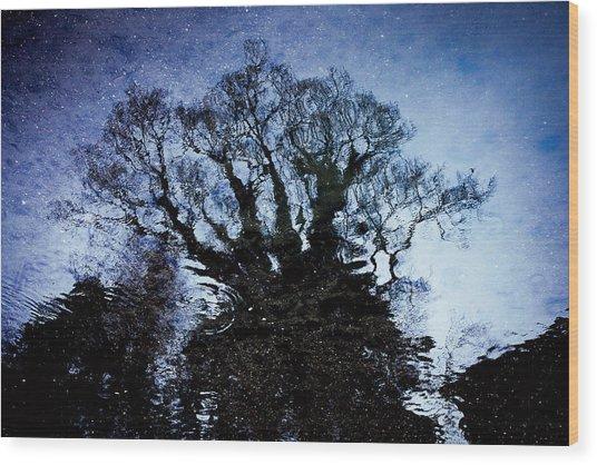 Twilight Illusion 2010 Wood Print by Sachiko Ide