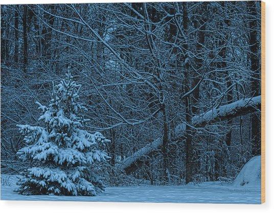 Twilight Snow Wood Print