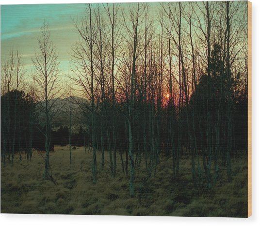 Twilight Wood Print