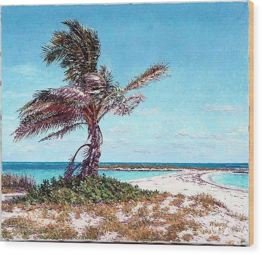 Twin Cove Palm Wood Print