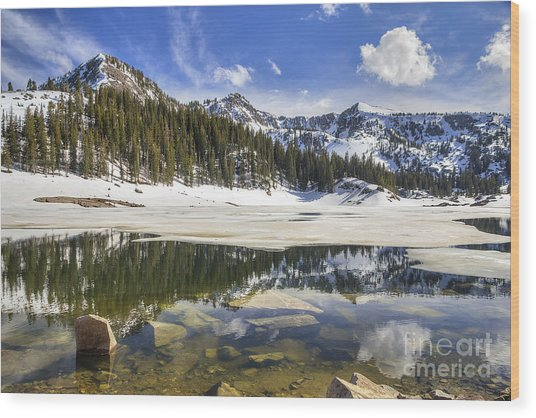Twin Lakes Reservoir Melting Ice Wood Print