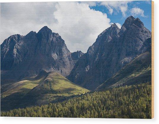 Twin Peaks In Mid-summer Wood Print