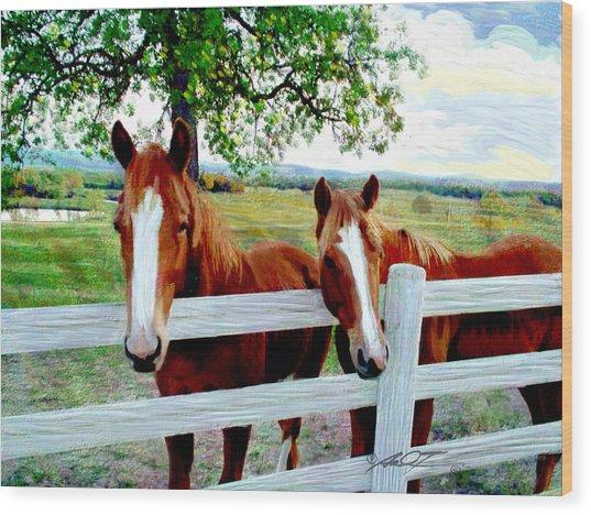 Twin Ponies Wood Print
