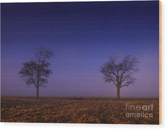 Wood Print featuring the photograph Twin Trees In The Mississippi Delta by T Lowry Wilson