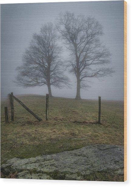 Twin Trees Late Fall Foggy Morning Wood Print