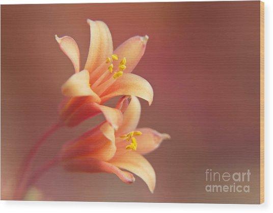 Twin Yucca Flowers Wood Print