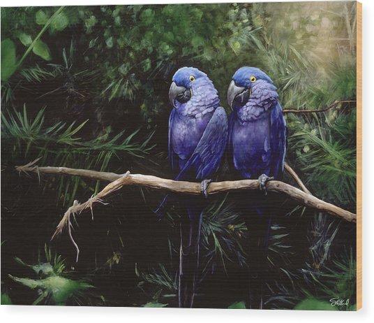 Twins Wood Print by Steve Goad