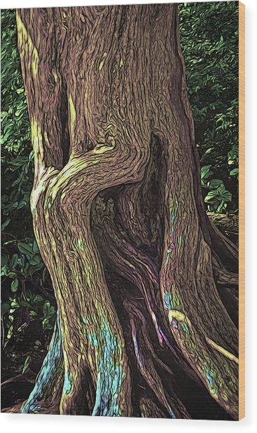Twisted Arbutus Tree Wood Print
