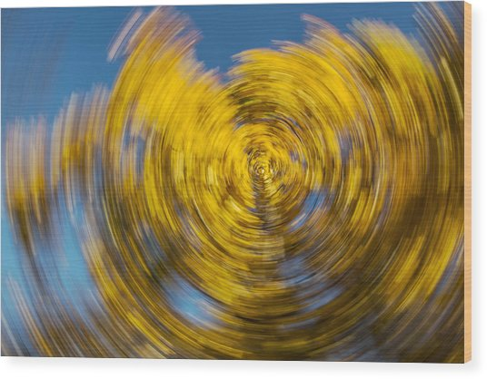 Twisted Colors Wood Print