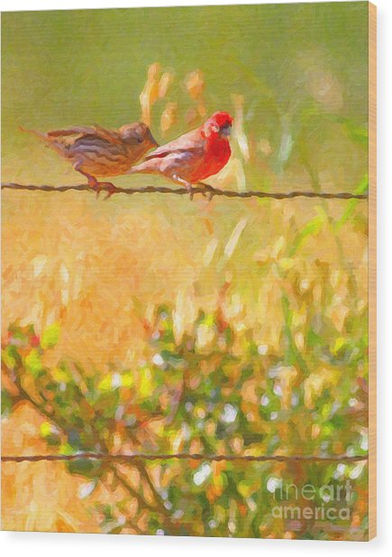 Two Birds On A Wire Wood Print