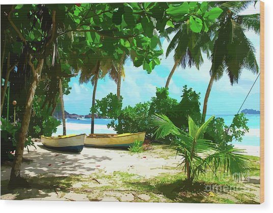 Two Boats On Tropical Beach Wood Print
