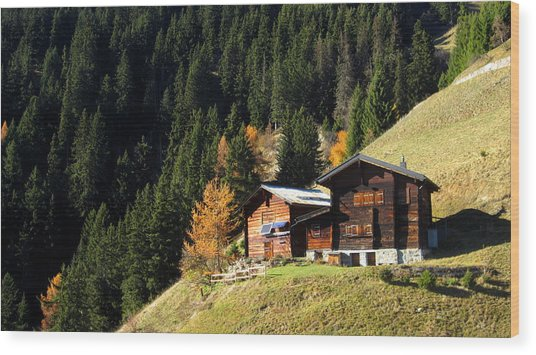 Two Chalets On A Mountainside Wood Print