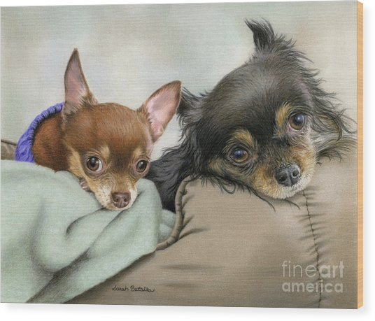 Like Two Chi's In A Pod Wood Print