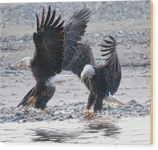 Two Eagles Wood Print by Clarence Alford