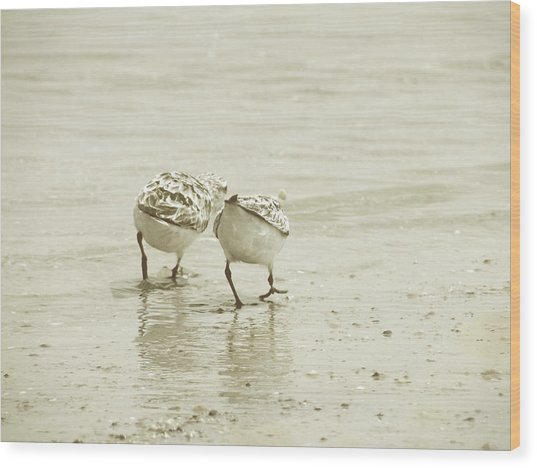 Two Of A Kind Wood Print by JAMART Photography