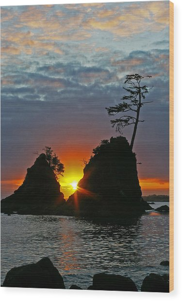 Two Of The Three Graces In Garibaldi Oregon Wood Print