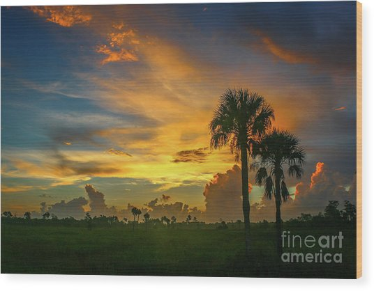 Two Palm Silhouette Sunrise Wood Print